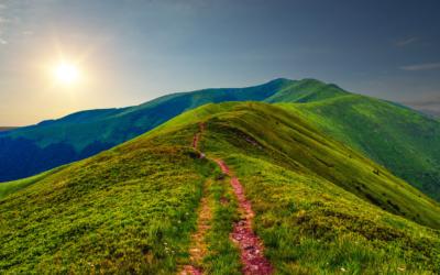 Iniziamo un nuovo percorso, nel segno delle Spiritual Care